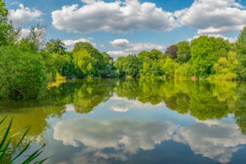 Potomac Lake